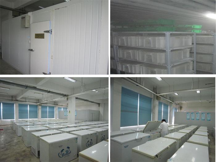 Semi-product Warehouse
