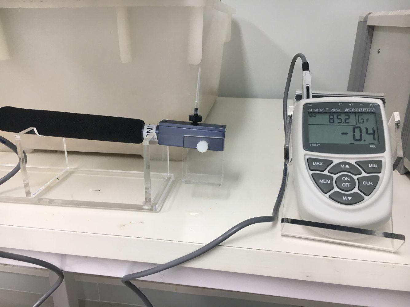 Mechanical allodynia test
