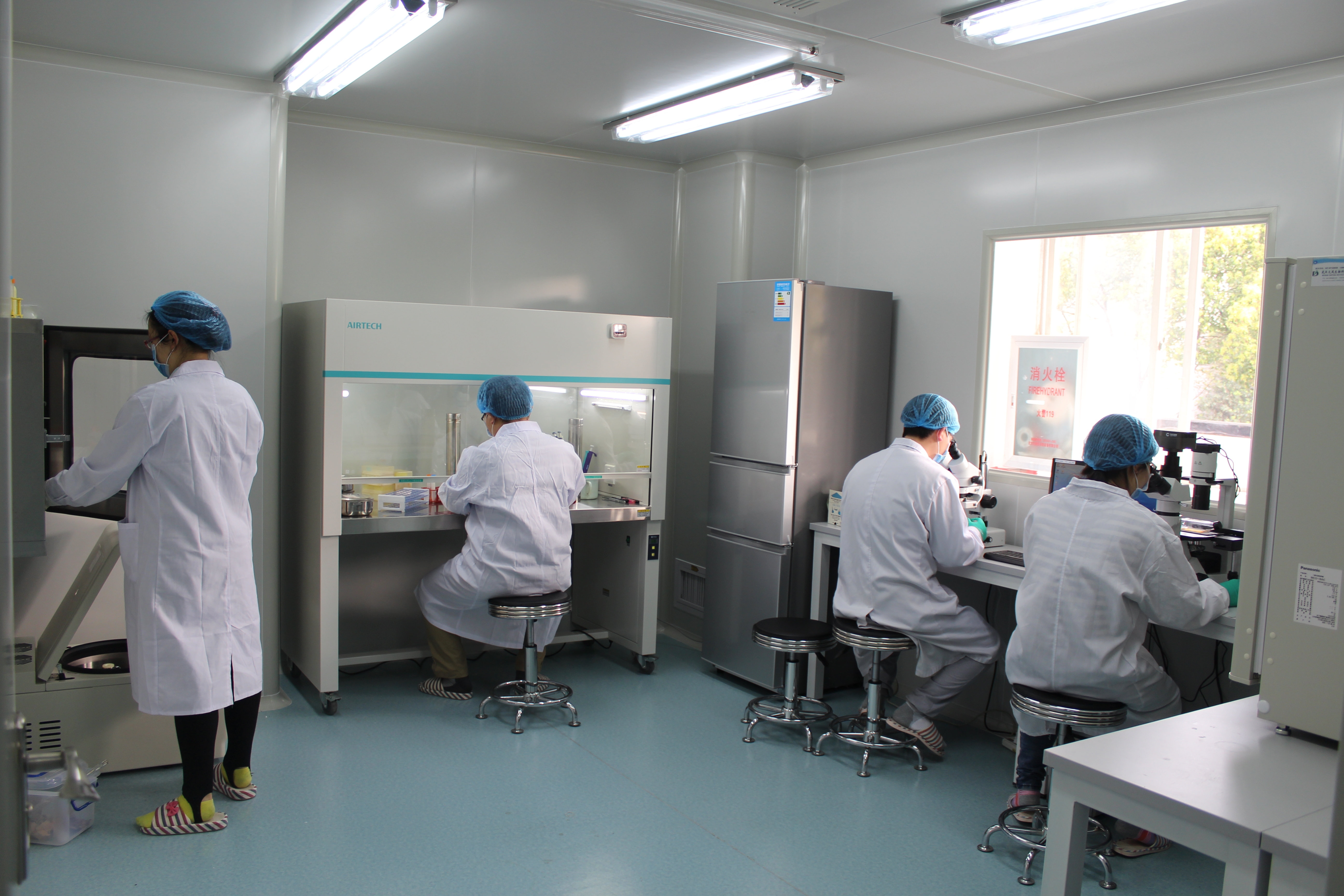 Primary cell culture-2