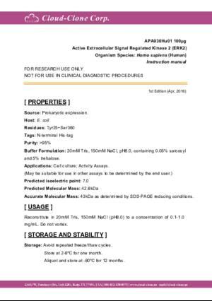 Active-Extracellular-Signal-Regulated-Kinase-2-(ERK2)-APA930Hu01.pdf