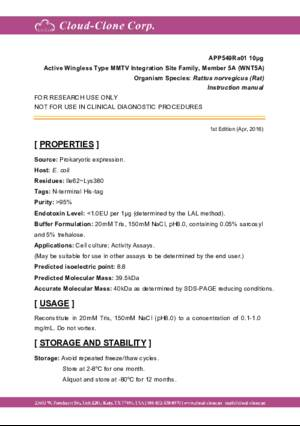 Active-Wingless-Type-MMTV-Integration-Site-Family--Member-5A-(WNT5A)-APP549Ra01.pdf