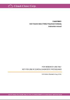 Anti-Tubulin-Beta-(TUBb)-Polyclonal-Antibody-CAB870Mi01.pdf