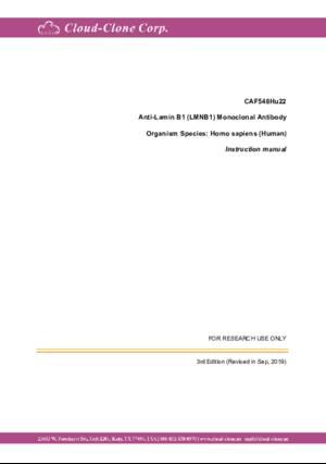 Anti-Lamin-B1-(LMNB1)-Monoclonal-Antibody-CAF548Hu22.pdf
