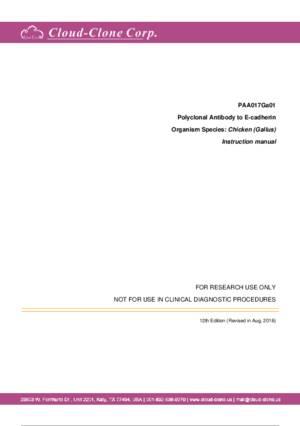 Antibody-to-Cadherin--Epithelial--CDHE--A90017Ga01.pdf