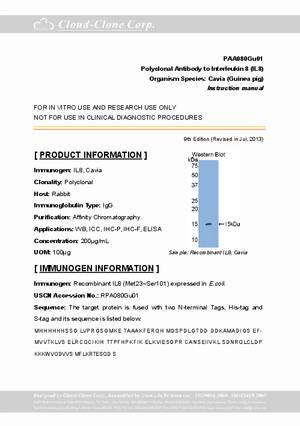 Antibody-to-Interleukin-8--IL8--A90080Gu01.pdf