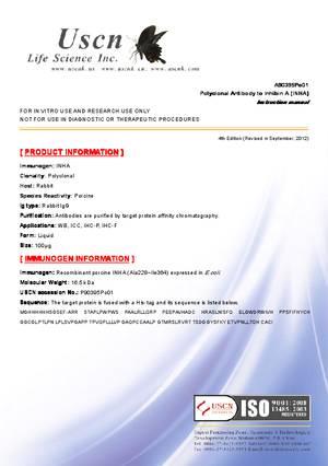 Antibody-to-Inhibin-A--INHA--A90395Po01.pdf