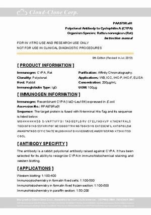 Antibody-to-Cyclophilin-A--CYPA--A90979Ra01.pdf