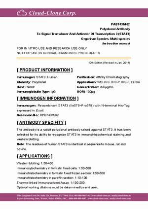 Polyclonal-Antibody-to-Signal-Transducer-And-Activator-Of-Transcription-3--STAT3--PAB743Mi02.pdf