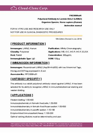 Polyclonal-Antibody-to-Laminin-Beta-2--LAMb2--PAC080Hu01.pdf