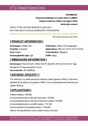 Polyclonal-Antibody-to-Laminin-Beta-2--LAMb2--PAC080Ra01.pdf