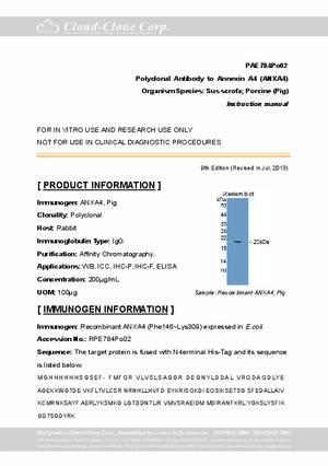 Polyclonal-Antibody-to-Annexin-A4--ANXA4--A94784Po02.pdf