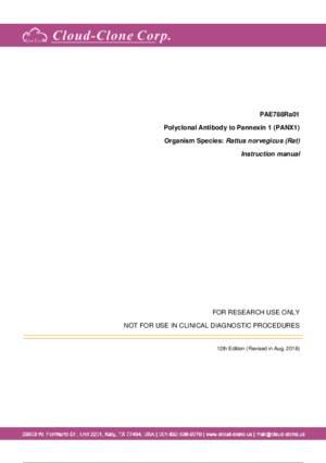 Polyclonal-Antibody-to-Pannexin-1--PANX1--PAE788Ra01.pdf