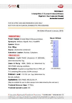 N-Acetyl-Beta-D-Glucosaminidase--NAGase--P90069Mu01.pdf