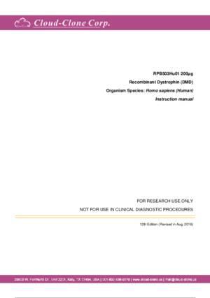 Dystrophin--DMD--P91503Hu01.pdf