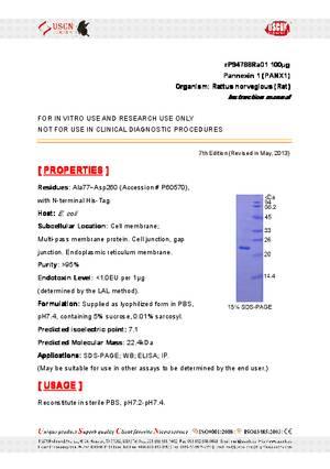 Pannexin-1--PANX1--rP94788Ra01.pdf