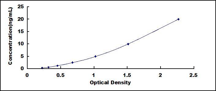 ELISA Kit for Quiescin Q6 Sulfhydryl Oxidase 1 (QSOX1)