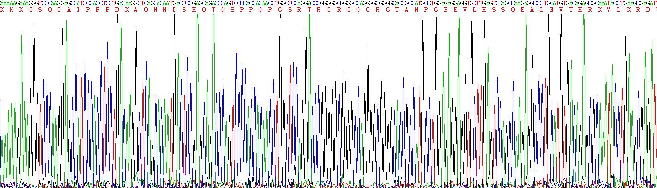 Active Gremlin 1 (GREM1)