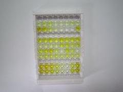 ELISA Kit for Hemoglobin (HB)