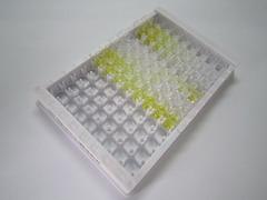 ELISA Kit for Vitamin B1 (VB1)