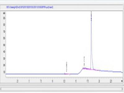 OVA Conjugated Procollagen I N-Terminal Propeptide (PINP)