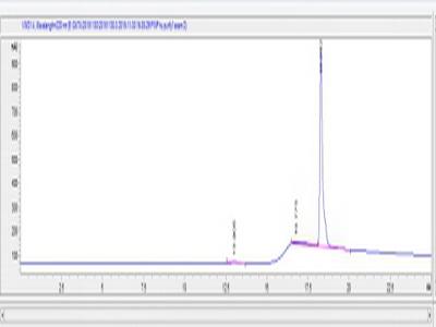 KLH Conjugated Procollagen I N-Terminal Propeptide (PINP)