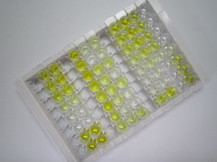 High Sensitive ELISA Kit for Cardiac Troponin I (cTnI)