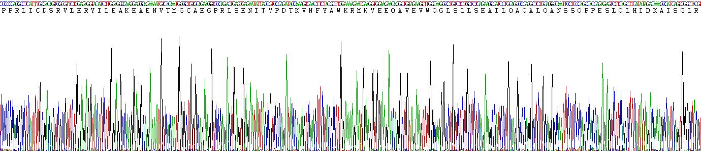 Recombinant Erythropoietin (EPO)