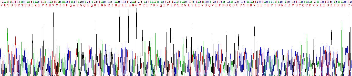 Recombinant Tumor Necrosis Factor Alpha (TNFa)