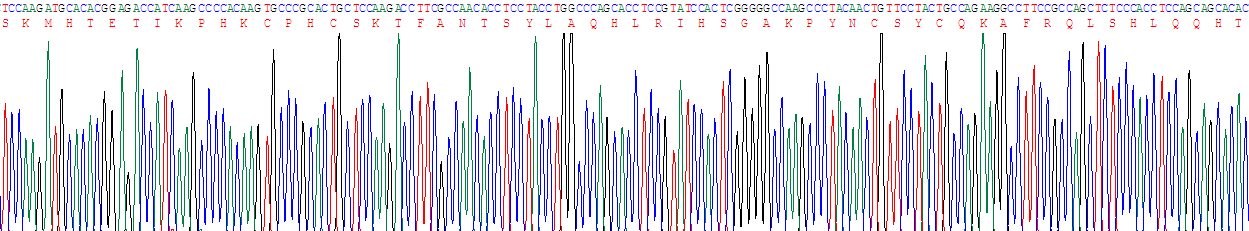 Recombinant Nuclear Matrix Protein 4 (NMP4)