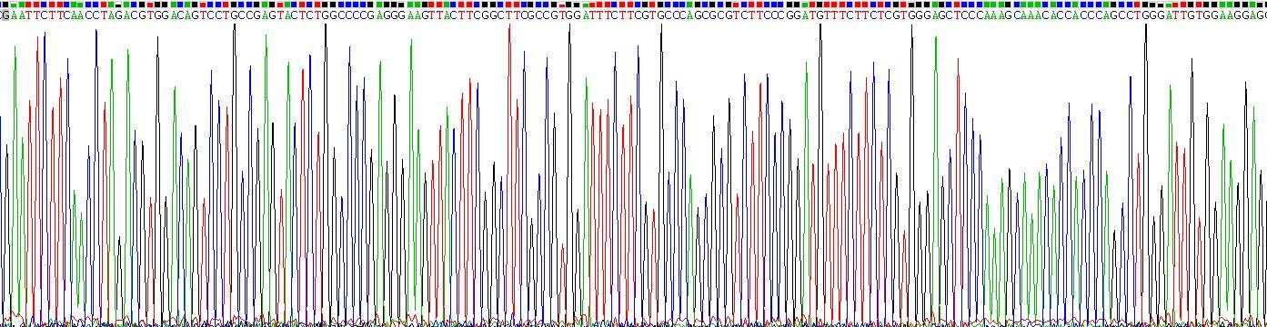Recombinant Integrin Alpha V (ITGaV)