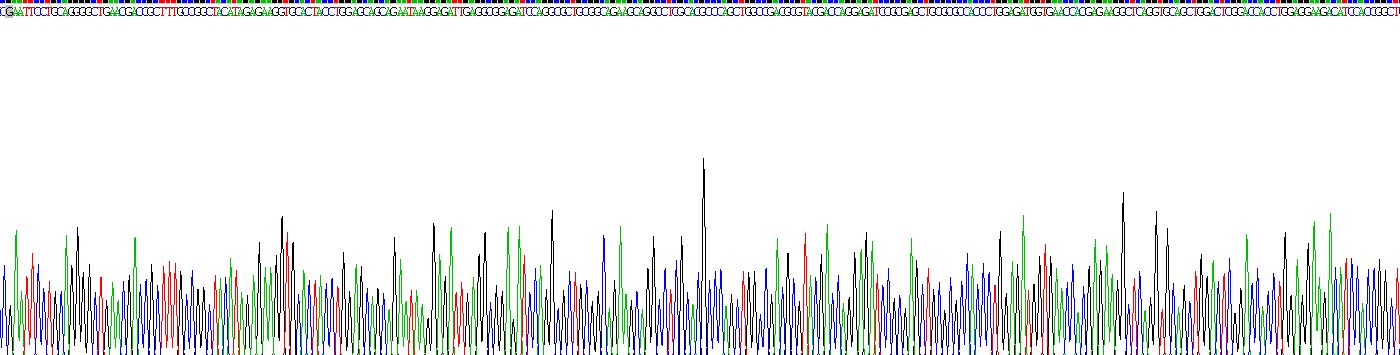 Recombinant Neurofilament 3 (NEF3)