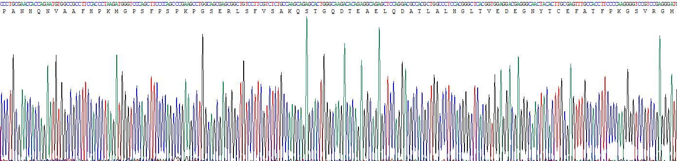 Recombinant Nectin 2 (NECTIN2)