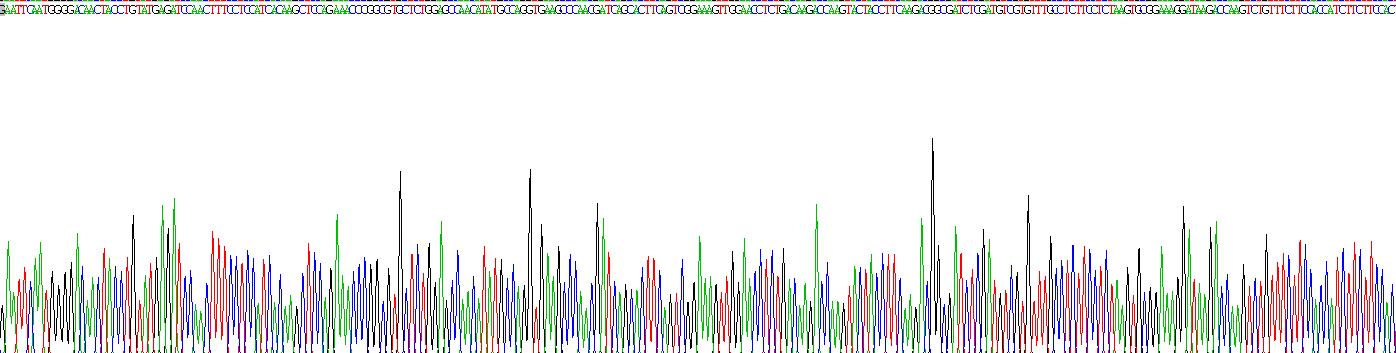 Recombinant Insulin Like Growth Factor 2 Receptor (IGF2R)