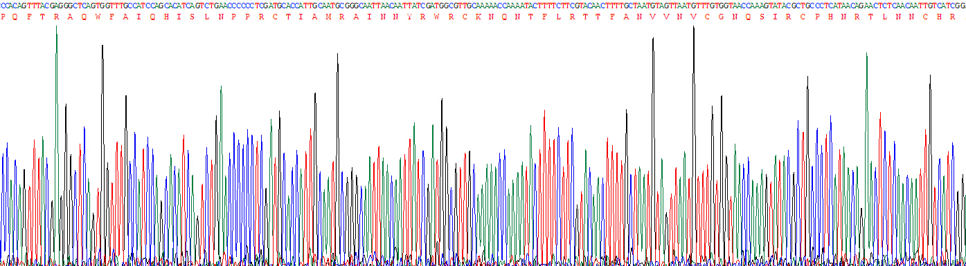 Recombinant Ribonuclease A3 (RNASE3)