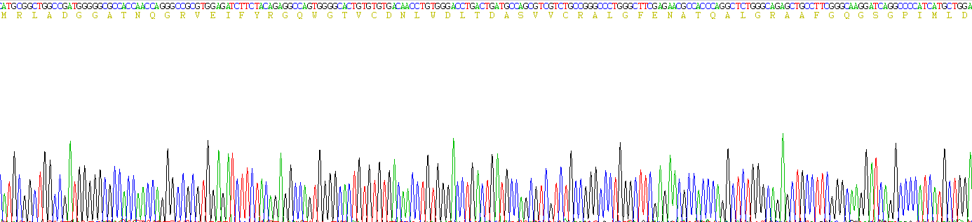 Recombinant Lectin Galactoside Binding, Soluble 3 Binding Protein (LGALS3BP)