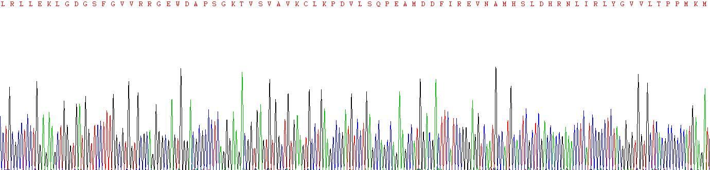 Recombinant Tyrosine Kinase, Non Receptor 2 (TNK2)