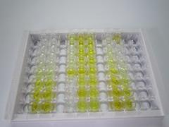 ELISA Kit for Preprovasopressin (VP)