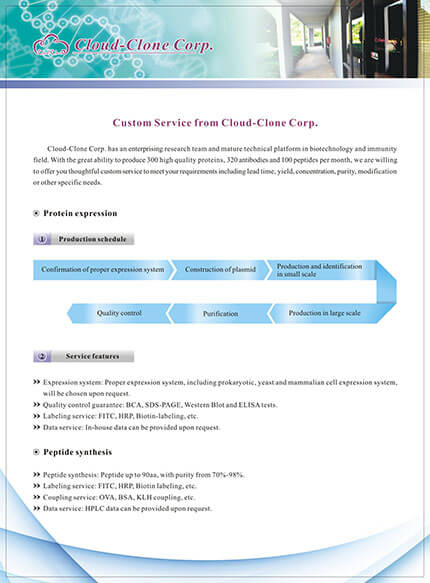 Custom Service from Cloud-Clone Corp.