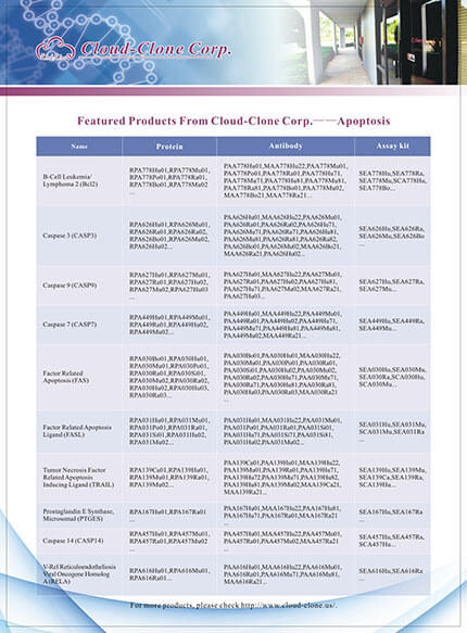 Featured Productes From Cloud-Clone Corp. -- Apoptosis
