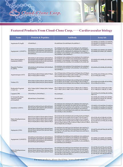Featured Productes From Cloud-Clone Corp. -- Cardiovascular biology