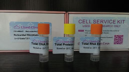 Total Protein/DNA/RNA Extract Customized Service
