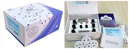 ELISA Kit for Albumin (ALB)