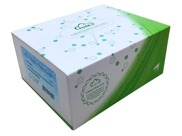 ELISA Kit for Cadherin, Epithelial (CDHE)